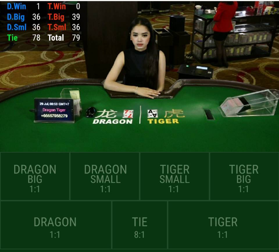 Dragon Tiger Payout